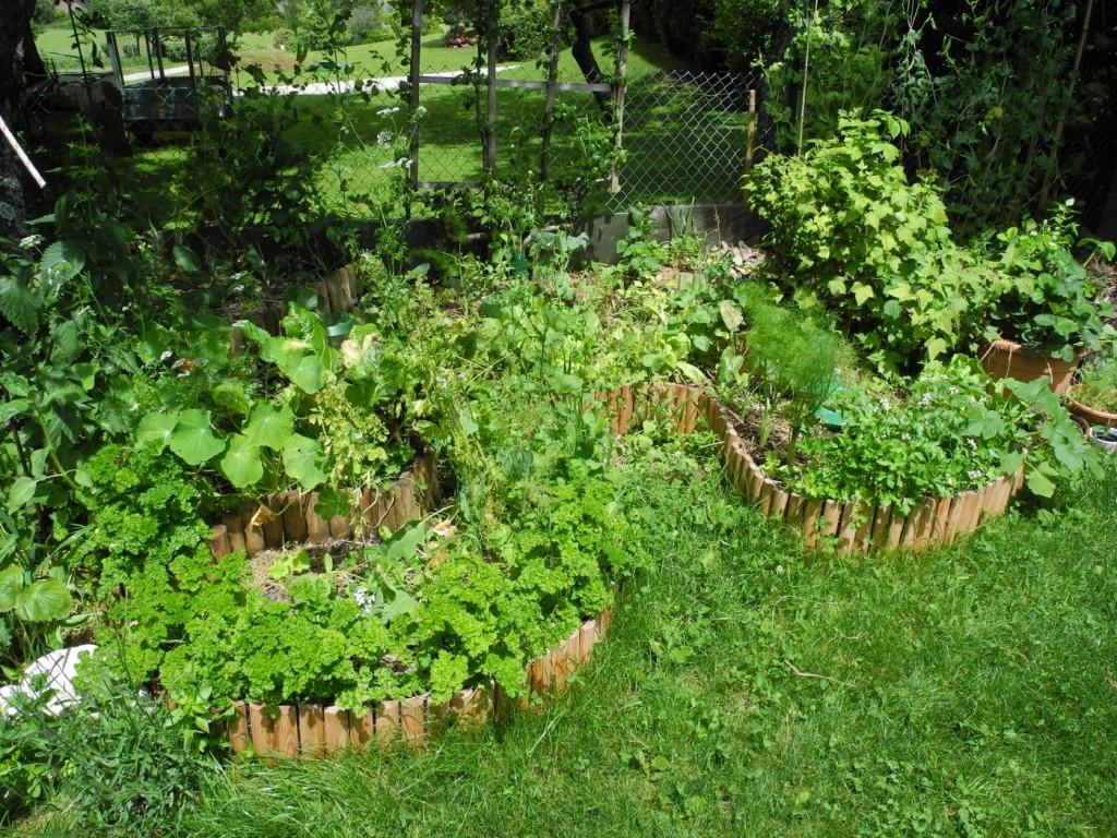 Gartenumgestaltung Ilebensraum Permakultur