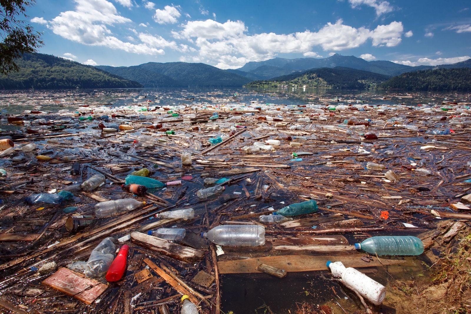 Artikel Plastikmüll in der Tiefsee und der Donau