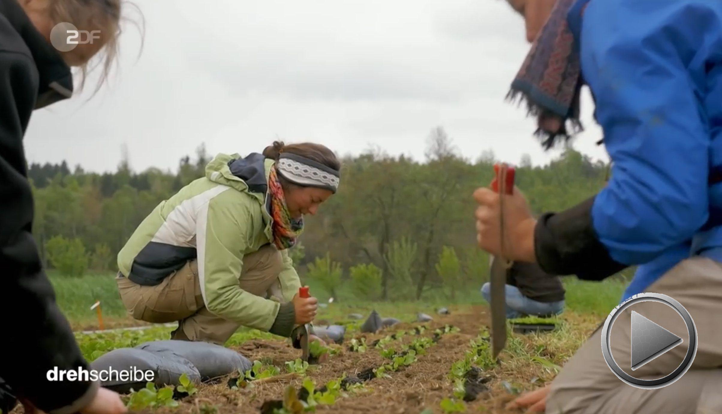 »Aufbauende Landwirtschaft« am Schloss Tempelhof