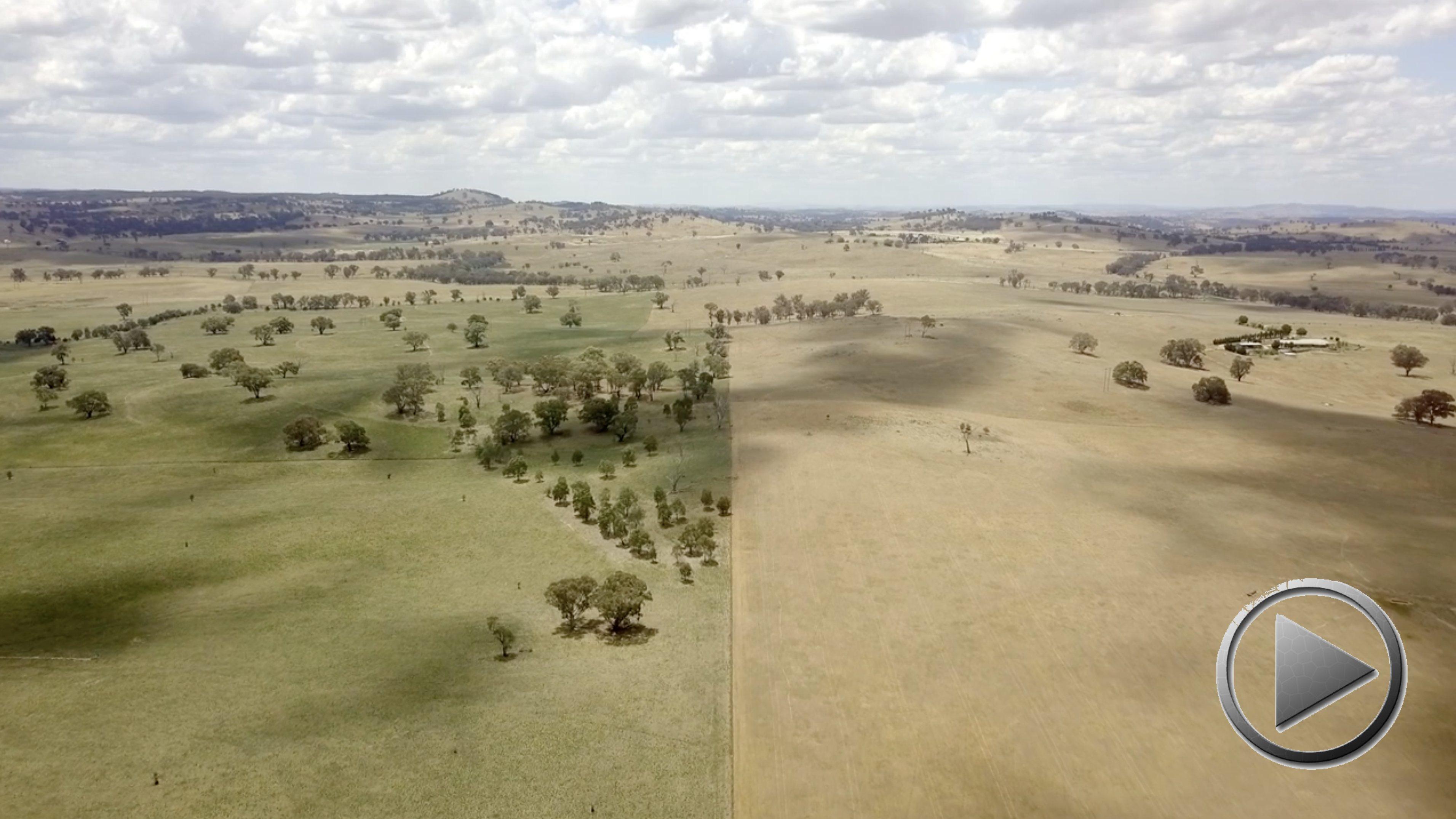 Doku: From the ground up – Ganzheitliches Weidemanagement in Australien