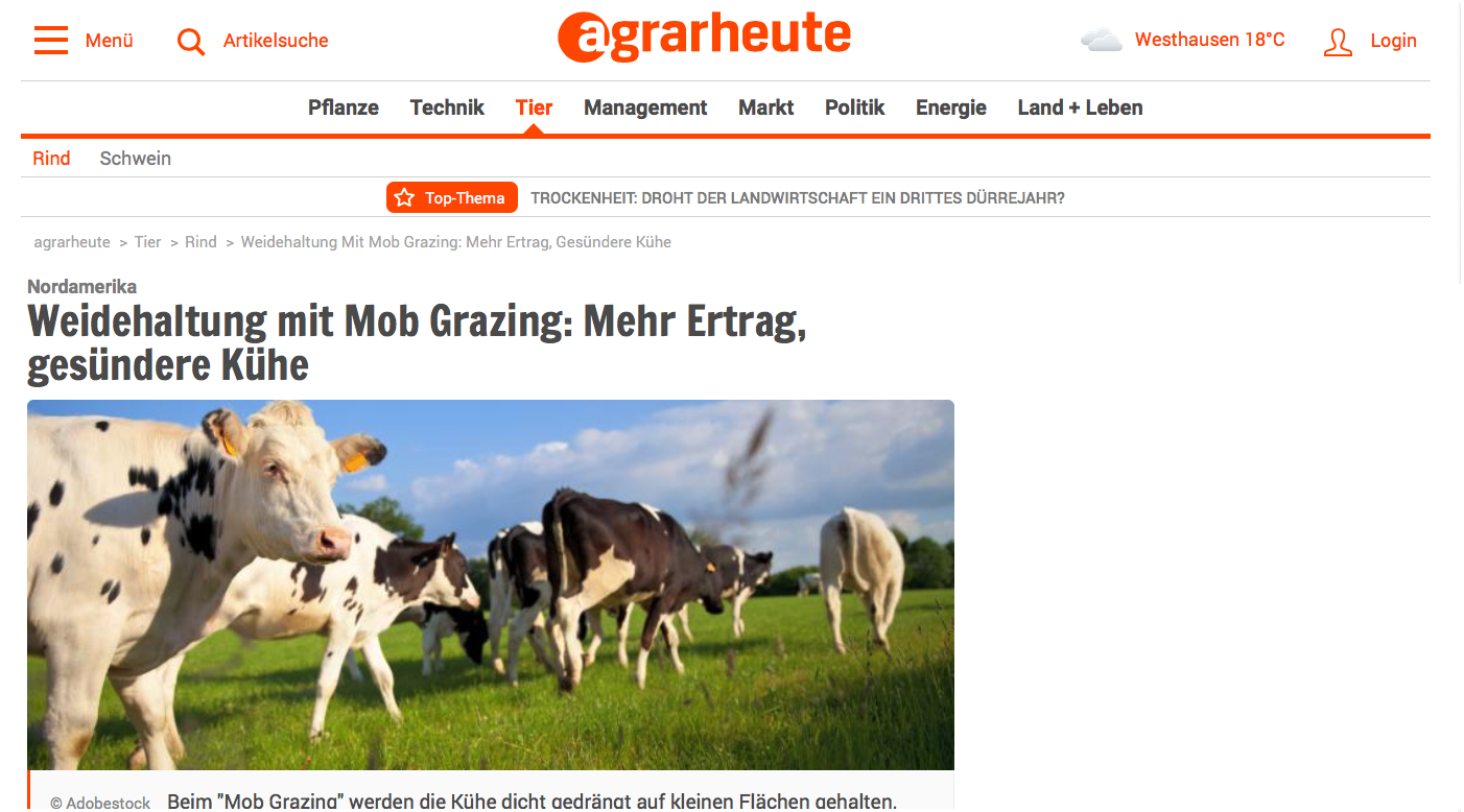 Mob-Grazing in agrarheute
