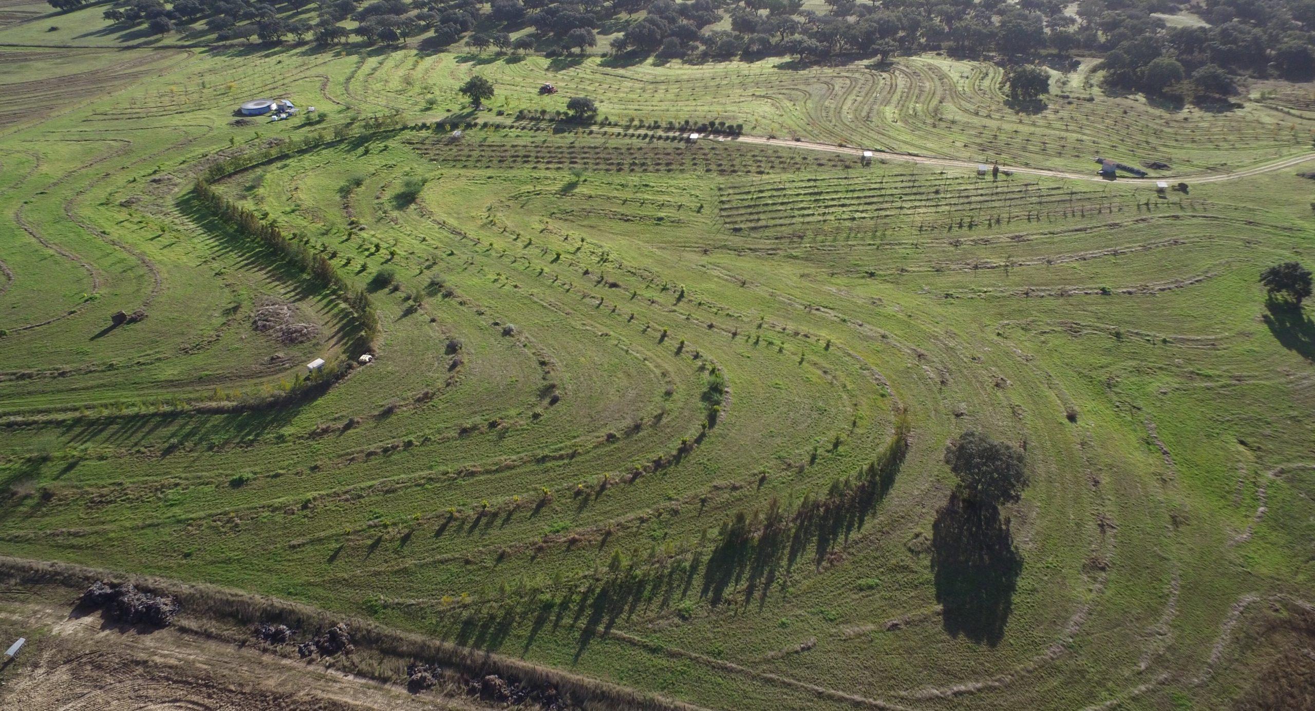 """Webinar am 9.7. »Keyline Design – wie das Wasser in der Land(wirt)schaft bleibt« in der Webinar-Reihe """"Aufbauende Landwirtschaft"""""""