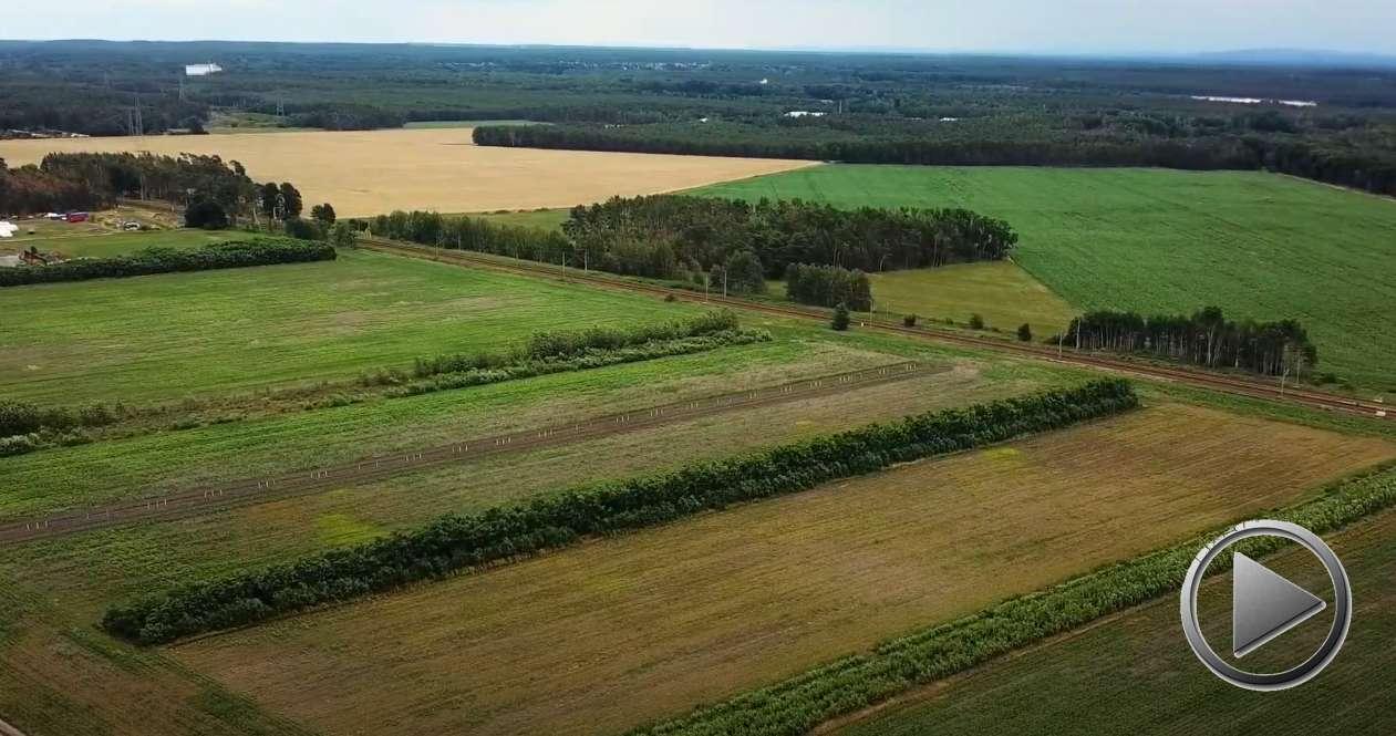 Wir stehen drauf – Landwirtschaft als Teil der Lösung