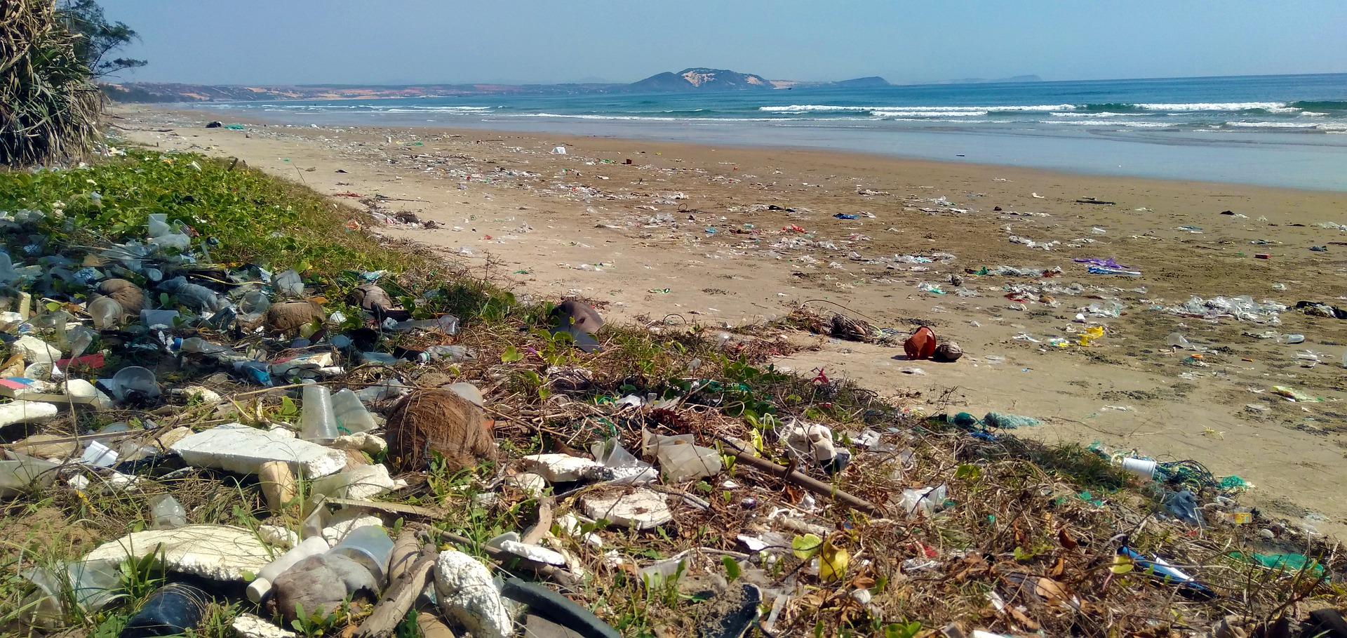 Frutti di Plastik – Mikroplastik in Meeresfrüchten