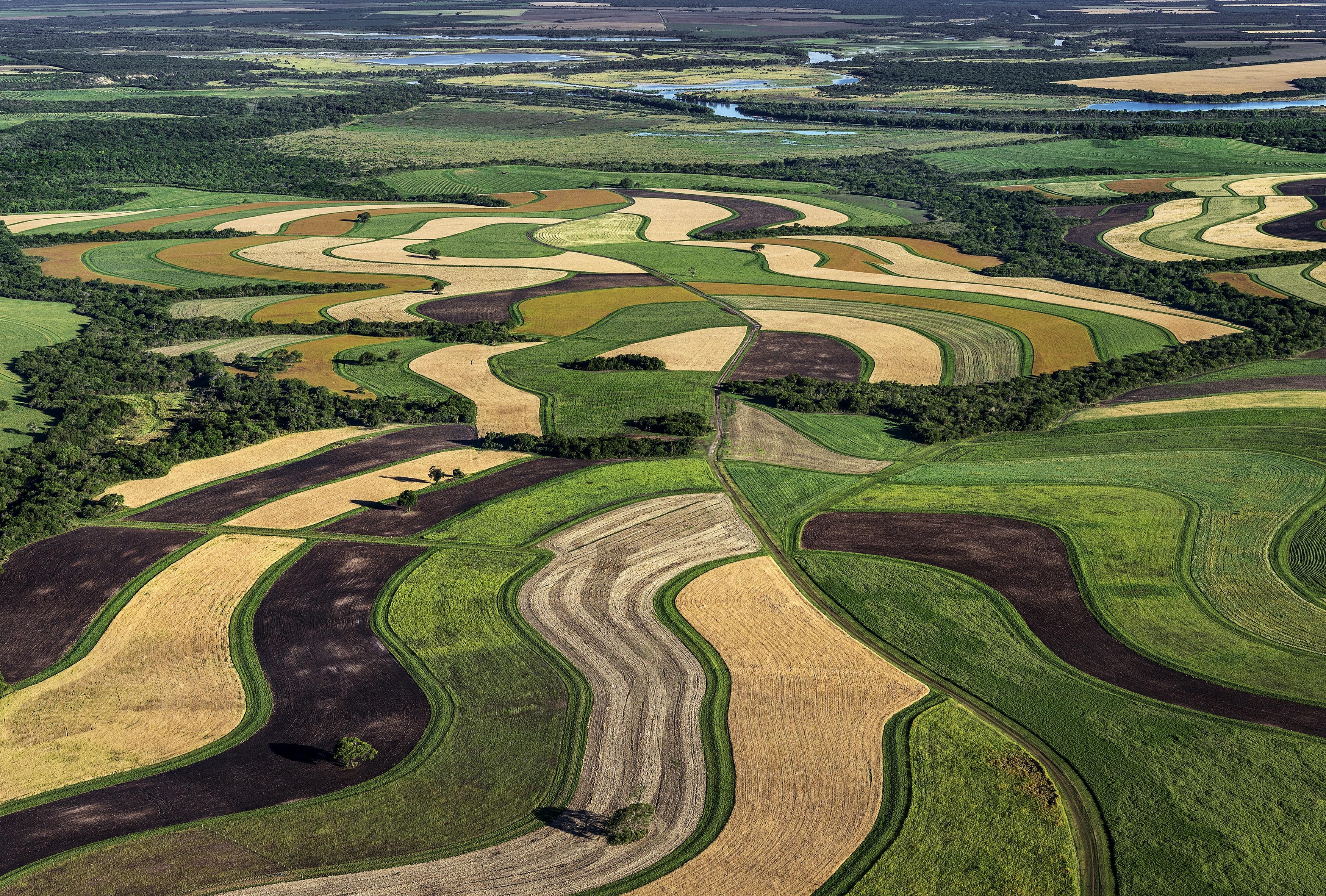 Erste Webinar-Reihe zur »Aufbauenden Landwirtschaft« – 12 Webinare, 12 Praktiker berichten