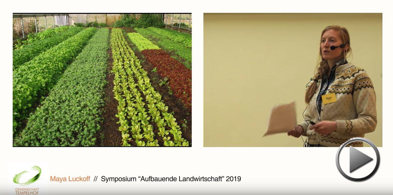 """Präsentation: Vom Pflug zu No-till im Gewächshaus. Maya Lukoff. Symposium """"Aufbauende Landwirtschaft"""" 2019"""