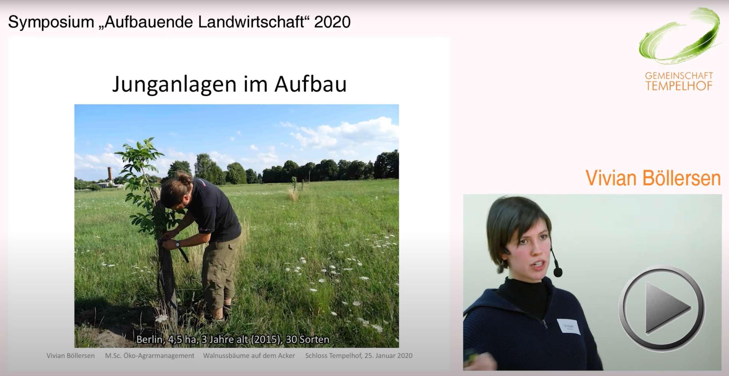 """Präsentation: Cash Crops von Bäumen – Walnussbäume auf dem Acker. Vivian Böllersen. Symposium """"Aufbauende Landwirtschaft"""" 2020"""