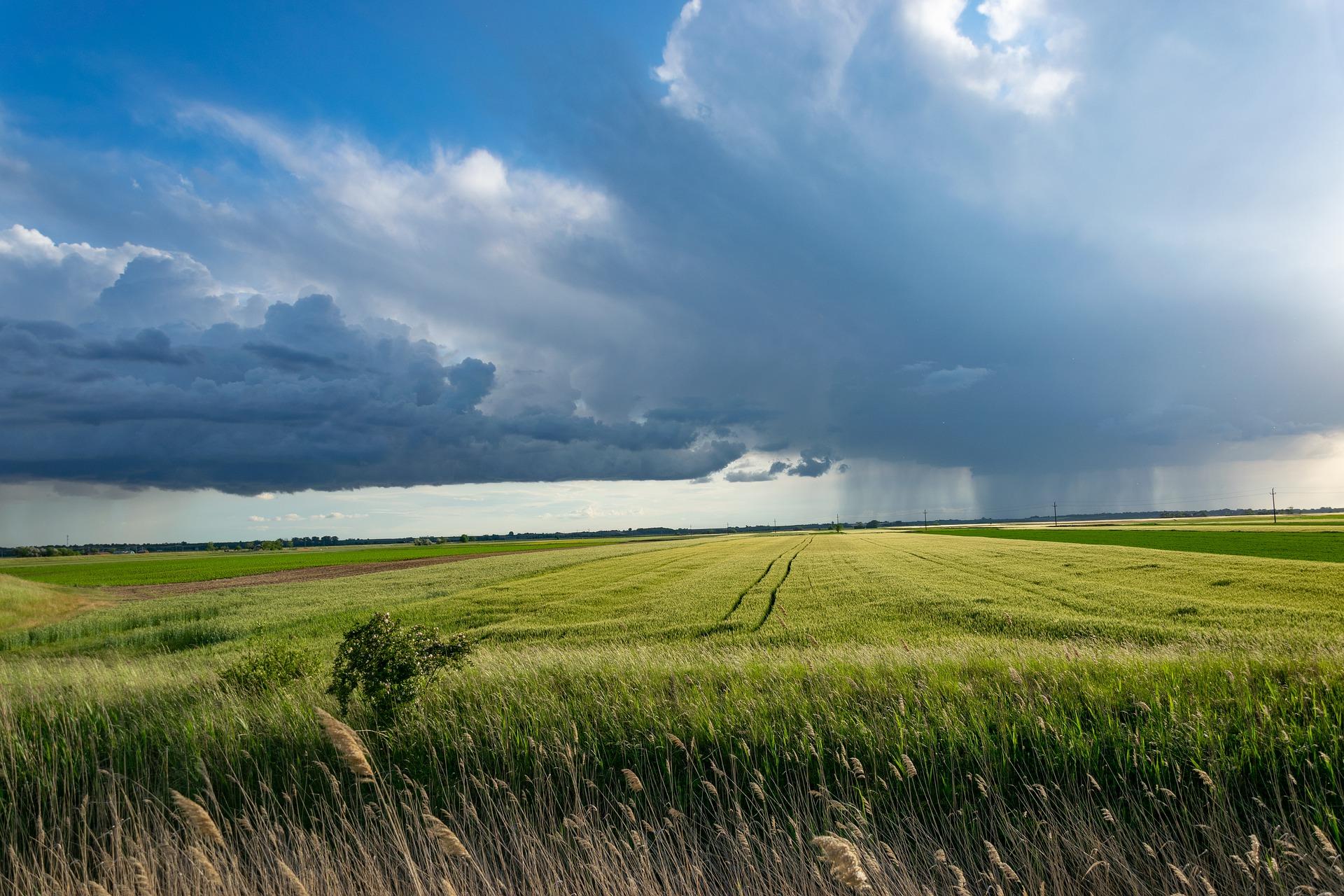 Wie die Bauern in den Great Plains das lokale Klima verändern