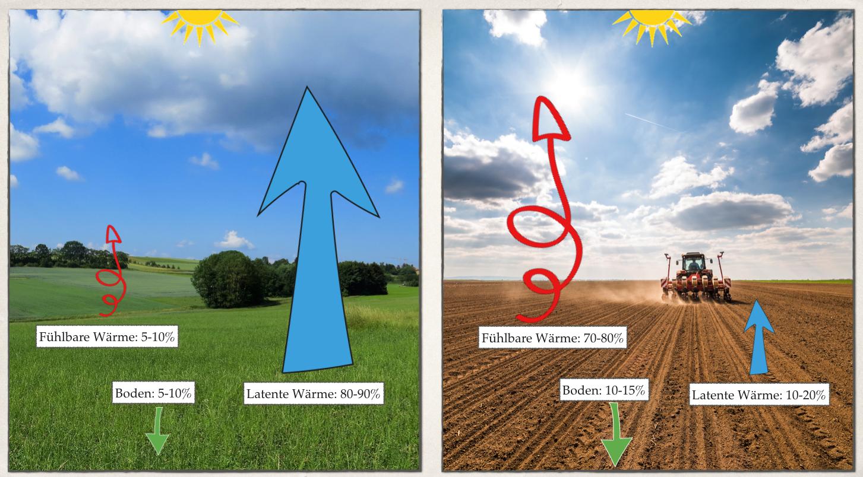 """Am 8.6.2021 in der 6. Webinar-Reihe """"Aufbauende Landwirtschaft"""": Stefan Schwarzer – »Wasser pflanzen. Mit der Natur arbeiten, um das Klima durch Pflanzen, Böden und Wasser positiv zu verändern«"""